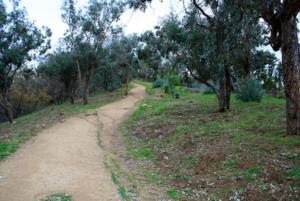 Elysian Park 2